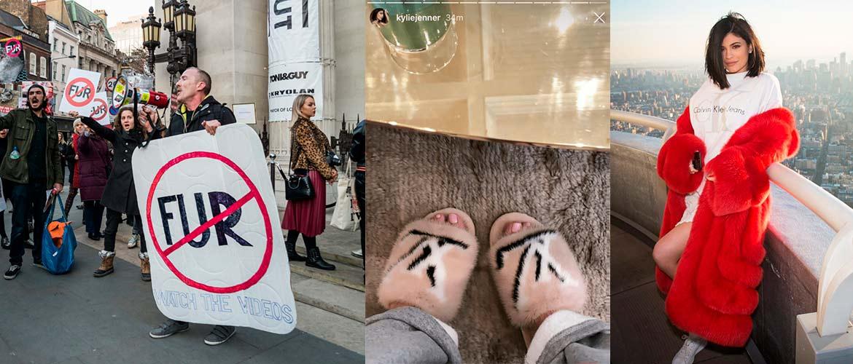 Кайли Дженер атаковали зоозащитники из-за ее меховых шуб